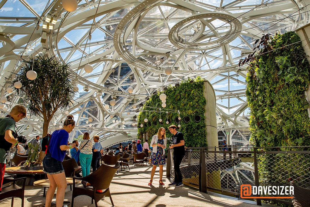 Amazon spheres interior